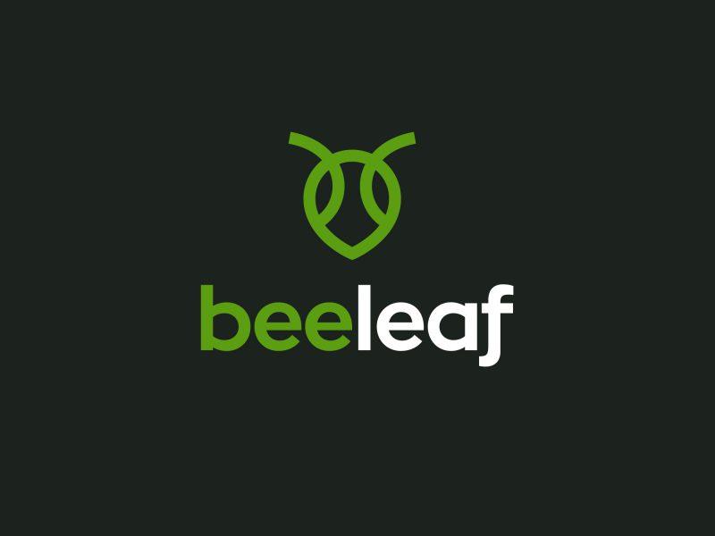 branding BeeLeaf by CUBE studio